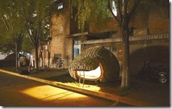 egg_house_in_china